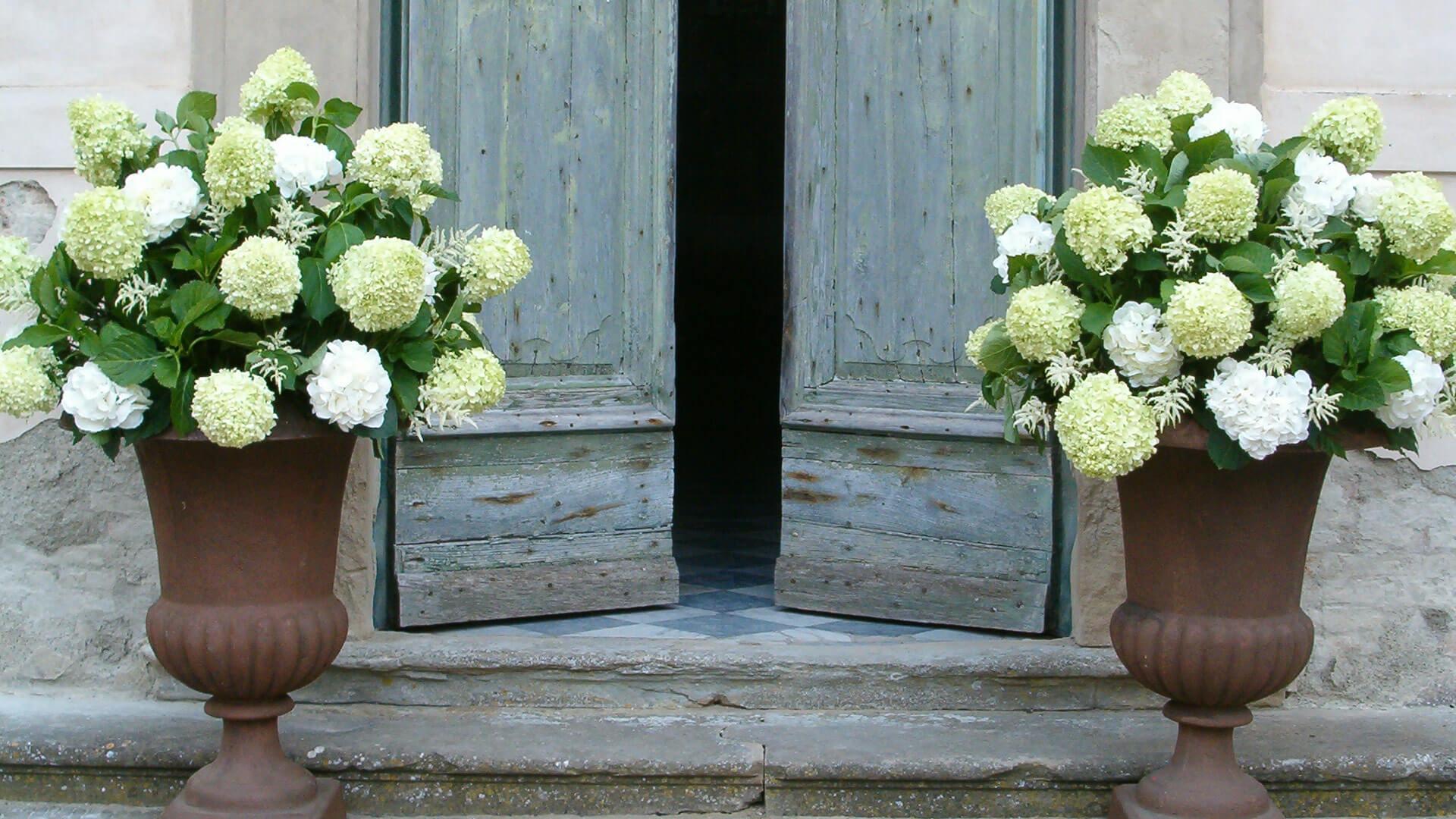 Toscana_incantevole_fiorile_1